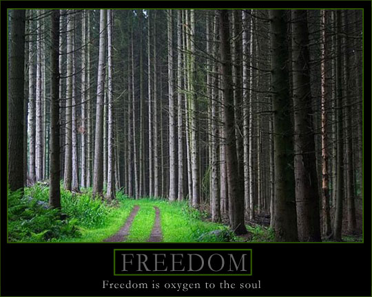 Poster: Freedom is oxygen to the soul