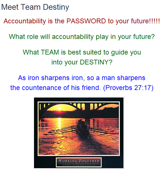 Meet Team Destiny
